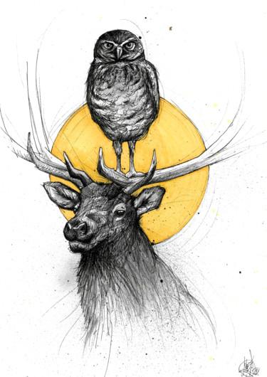 Owl deer
